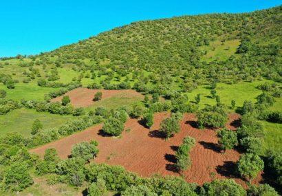 بازگشت ۴ هزار متر مربع از اراضی ملی رامسر به بیت المال