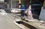 ذبح غیربهداشتی و غیرشرعی دام در جواهرده
