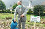کاشت ۴ هزار اصله درخت صنوبر در اردوگاه میرزا کوچک خان رامسر
